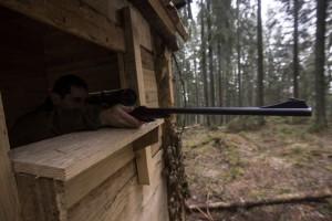 Unul din foișoarele de pândă de pe fondul de vânătoare Valea Mare