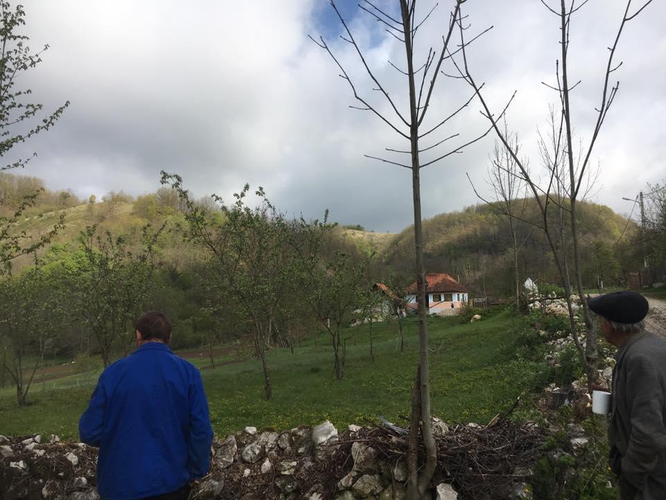 Viața la sat