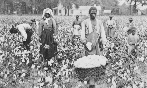sharecroppers-cotton-photograph-Georgia-TW-Ingersoll-1898 (1)